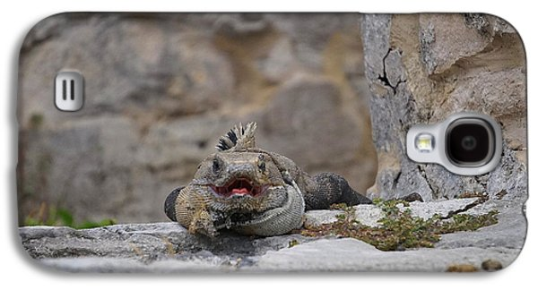 Fantasy Photographs Galaxy S4 Cases - Iguana in Wait Galaxy S4 Case by Laurie Perry