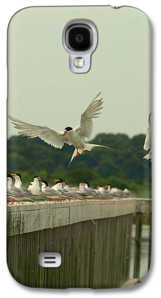 Landscapes Photographs Galaxy S4 Cases - In Flight Galaxy S4 Case by Terrie Stickle