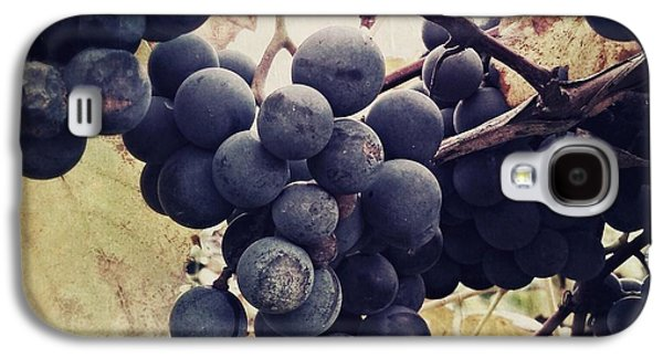 Concord Grapes Galaxy S4 Cases - In the vineyard Galaxy S4 Case by Mahalograph                                        Photography