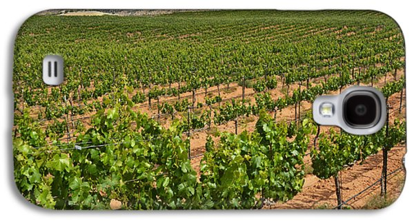 Vino Photographs Galaxy S4 Cases - In The Vinyard Galaxy S4 Case by Dan Holm