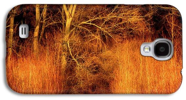 Inferno Galaxy S4 Case by Wim Lanclus