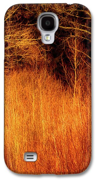 Creepy Galaxy S4 Cases - Inferno Galaxy S4 Case by Wim Lanclus