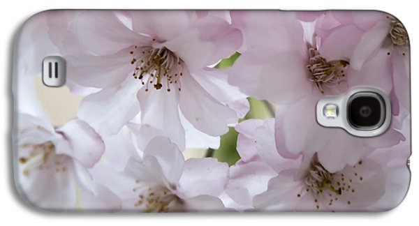 Cherry Blossoms Pyrography Galaxy S4 Cases - Innocence Galaxy S4 Case by Olga Photography