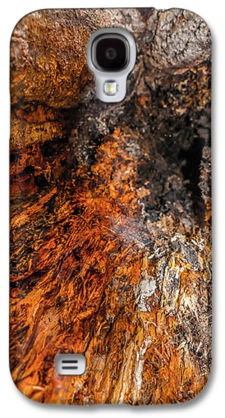 Creepy Galaxy S4 Cases - Insides Galaxy S4 Case by Wim Lanclus