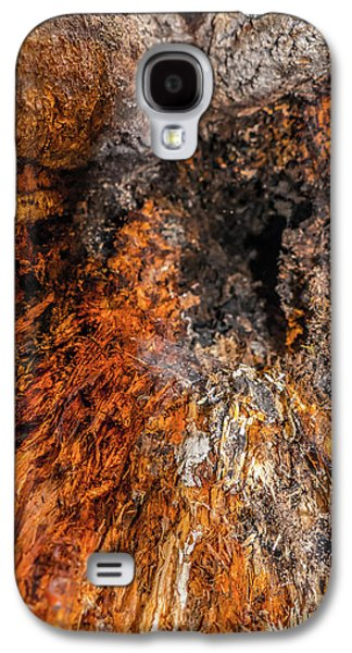 Abstract Nature Galaxy S4 Cases - Insides Galaxy S4 Case by Wim Lanclus