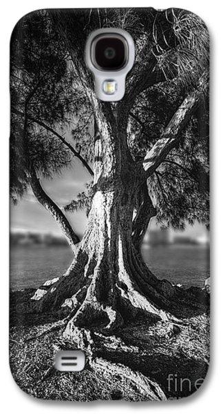 Intercoastal Pine Galaxy S4 Case by Marvin Spates