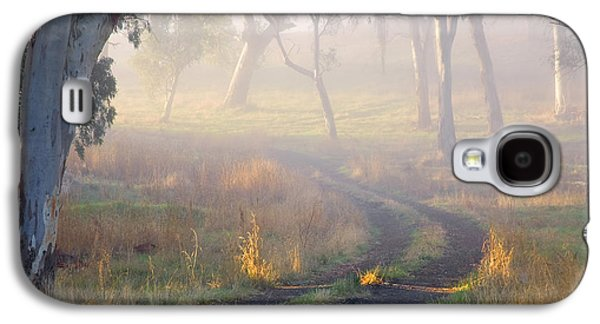 Paths Galaxy S4 Cases - Into the Mist Galaxy S4 Case by Mike  Dawson