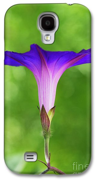 Ipomoea Morning Glory Grandpas Ott Galaxy S4 Case by Tim Gainey