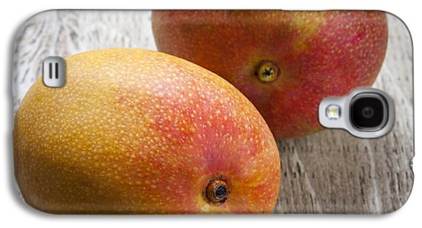 It Takes Two To Mango Galaxy S4 Case by Elena Elisseeva