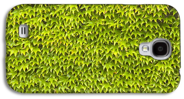 Wimbledon Galaxy S4 Cases - Ivy Wall Galaxy S4 Case by Andy Smy