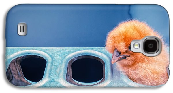 Chicks Galaxy S4 Cases - Iz In Da Feeder. Galaxy S4 Case by TC Morgan