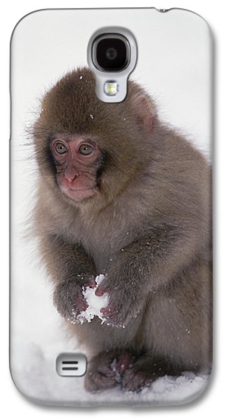 Animals and Earth - Galaxy S4 Cases - Japanese Macaque Macaca Fuscata Baby Galaxy S4 Case by Konrad Wothe
