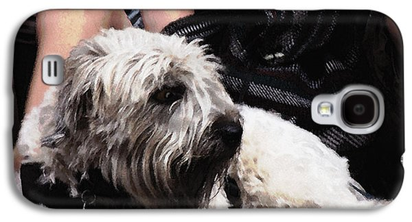 Puppy Digital Art Galaxy S4 Cases - Jazzed Pooch Galaxy S4 Case by Phil Welsher