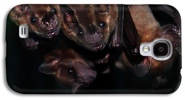 Bat Digital Art Galaxy S4 Cases - Just Hanging Around - Bats Galaxy S4 Case by Bill Cannon