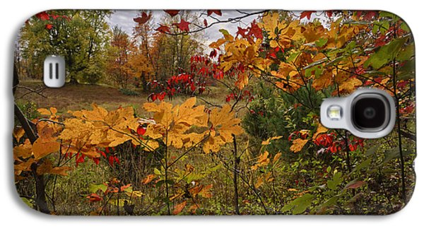 Kentucky Fall Colors Galaxy S4 Case by Wendell Thompson