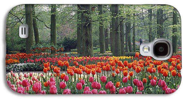 Keukenhof Garden, Lisse, The Netherlands Galaxy S4 Case by Panoramic Images