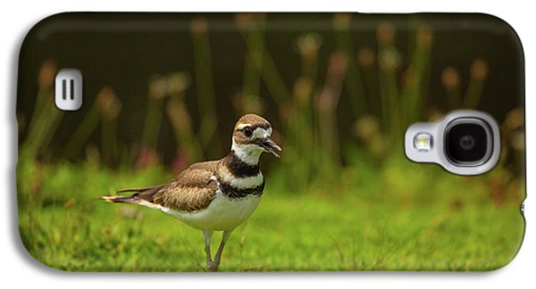 Killdeer Galaxy S4 Case by Karol Livote