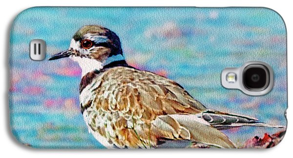 Killdeer  Galaxy S4 Case by Ken Everett