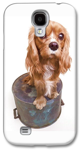 Puppies Galaxy S4 Cases - King Charles Spaniel Puppy Galaxy S4 Case by Edward Fielding
