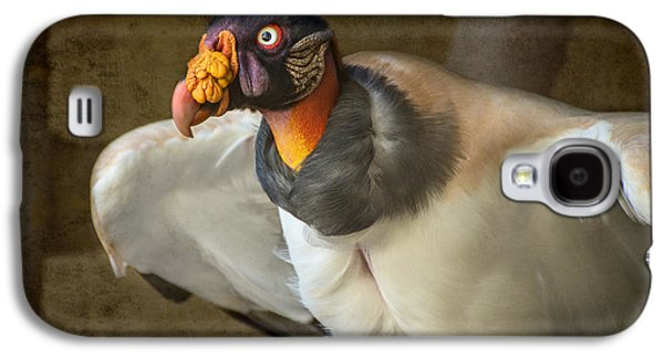 King Vulture Galaxy S4 Case by Jamie Pham