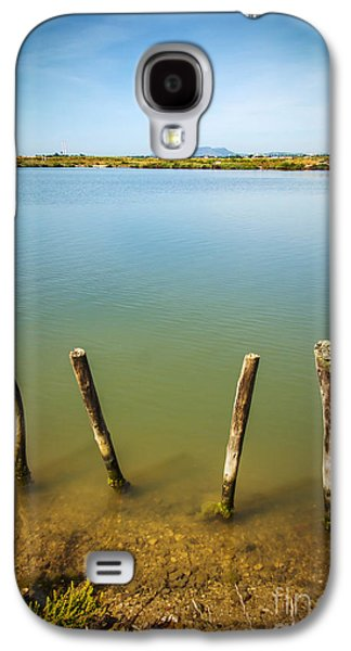 Park Scene Galaxy S4 Cases - Lake and Poles Galaxy S4 Case by Carlos Caetano
