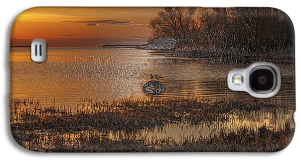 Light Galaxy S4 Cases - Lake-VII Galaxy S4 Case by Scott Mendell