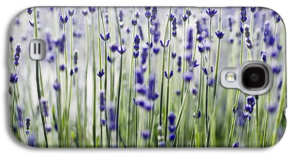 Printscapes - Galaxy S4 Cases - Lavender Patterns Galaxy S4 Case by Ray Laskowitz - Printscapes