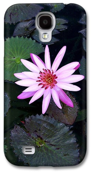 Lilly Pad Galaxy S4 Cases - Lilly Pad Galaxy S4 Case by Rebecca Cozart