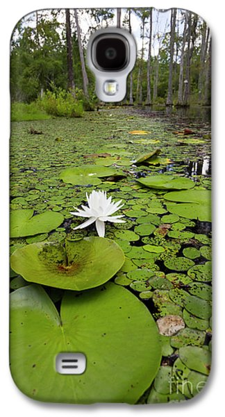 Lilypads And Flower In The Cypress Swamp Galaxy S4 Case by Dustin K Ryan