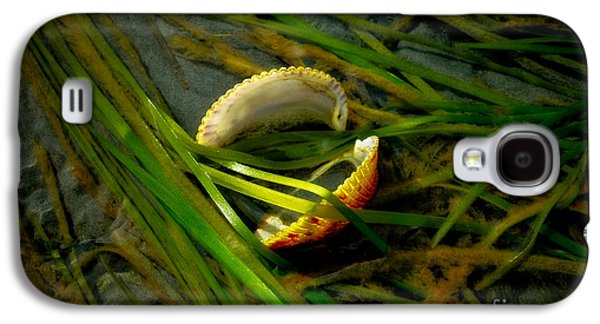 Alga Galaxy S4 Cases - Linguini with Clams Galaxy S4 Case by Venetta Archer