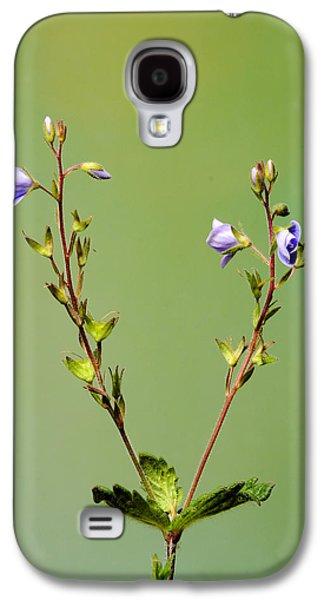 Lino Photographs Galaxy S4 Cases - Lino Galaxy S4 Case by Iskander Barrena Zubiaur
