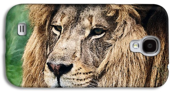 Contemplative Photographs Galaxy S4 Cases - Lion Heart DWC Galaxy S4 Case by Kevin Anderson