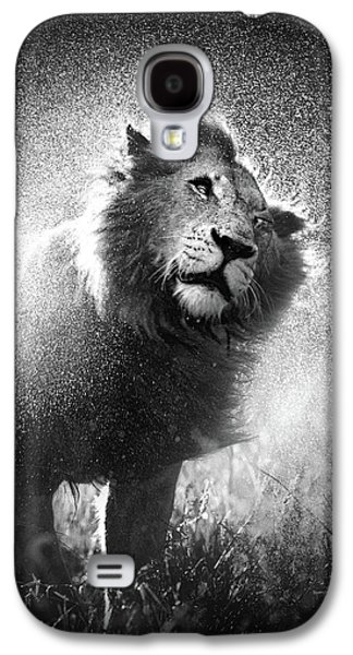 Monotone Galaxy S4 Cases - Lion shaking off water Galaxy S4 Case by Johan Swanepoel
