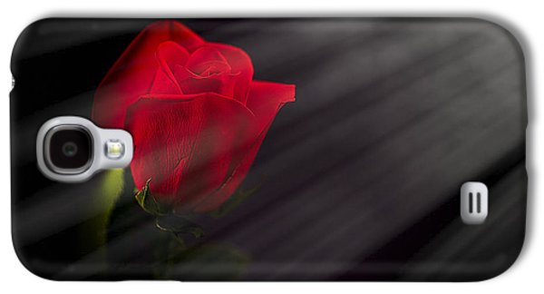 Studio Photographs Galaxy S4 Cases - Lit Red Rose Galaxy S4 Case by Whitney Witthans