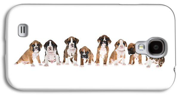 Litter Of Boxer Puppies Galaxy S4 Case by Diane Diederich
