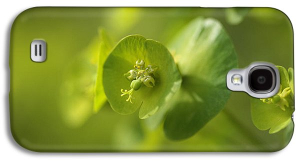 Contemplative Photographs Galaxy S4 Cases - Green Power Galaxy S4 Case by Connie Handscomb