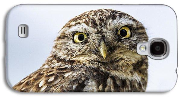 Little Galaxy S4 Cases - Little Owl  Galaxy S4 Case by Paul Neville