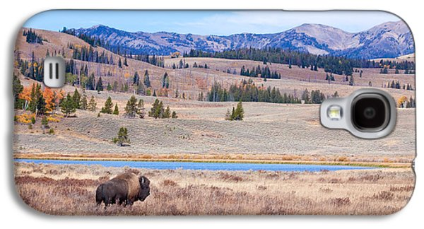 Bison Digital Galaxy S4 Cases - Lone Bull Buffalo Galaxy S4 Case by Cindy Singleton