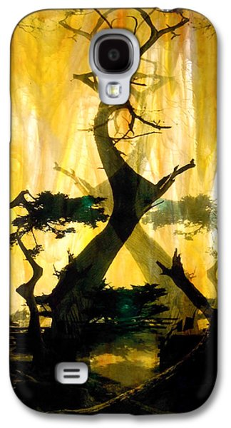 Landscapes Glass Art Galaxy S4 Cases - Lone Cypress Galaxy S4 Case by Mykel Davis