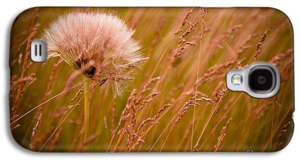 Lone Dandelion Galaxy S4 Case by Bob Mintie