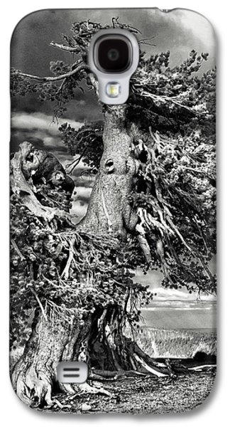 Strong America Galaxy S4 Cases - Lone gnarled old Bristlecone Pines at Crater Lake - Oregon Galaxy S4 Case by Christine Till