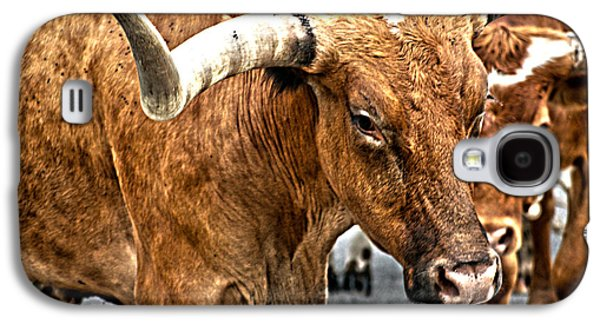 Cattle Drive Photographs Galaxy S4 Cases - Longhorns Galaxy S4 Case by Toni Hopper