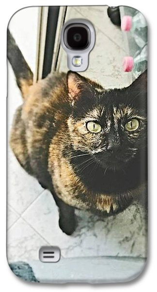 Puppies Galaxy S4 Cases - Look me Galaxy S4 Case by Alia Bastet