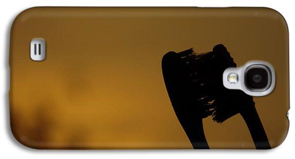 Etc. Paintings Galaxy S4 Cases - Love Galaxy S4 Case by Ram Prasad