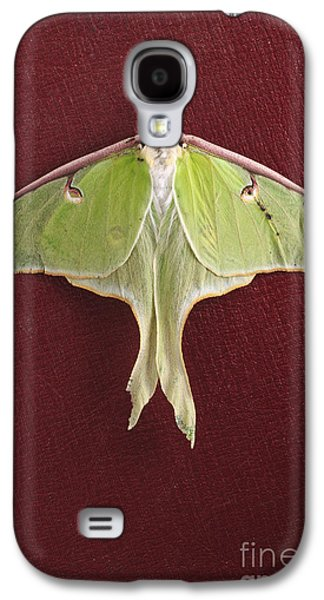 Luna Galaxy S4 Cases - Luna Moth over Red Leather Galaxy S4 Case by Edward Fielding