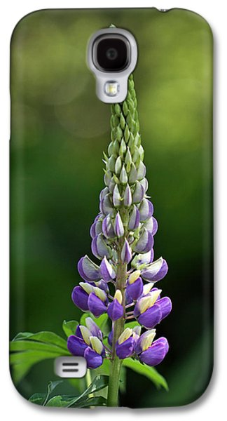 Maine Meadow Galaxy S4 Cases - Lupine Galaxy S4 Case by Juergen Roth