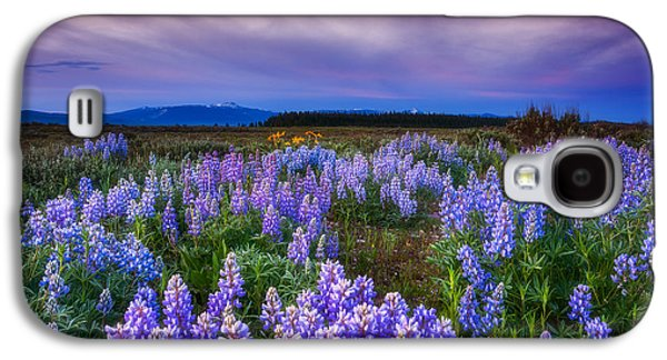 Landscape Acrylic Prints Galaxy S4 Cases - Lupine Morning Galaxy S4 Case by Darren  White