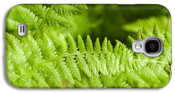 Green Galaxy S4 Cases - Luscious fern Galaxy S4 Case by Marcus Karlsson Sall