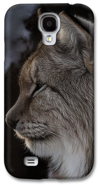 Lynx At Sunrise Galaxy S4 Case by Tammy Lauritsen
