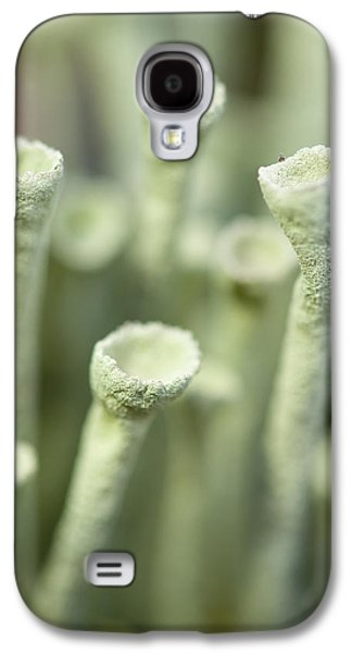Harts Galaxy S4 Cases - Macro View Of Lichen In The Tundra Galaxy S4 Case by Cathy Hart
